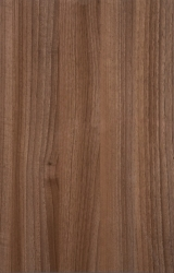 Tipp99Walnut_highGLOSS